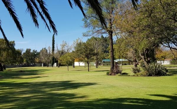 lawn-in-pristine-condition