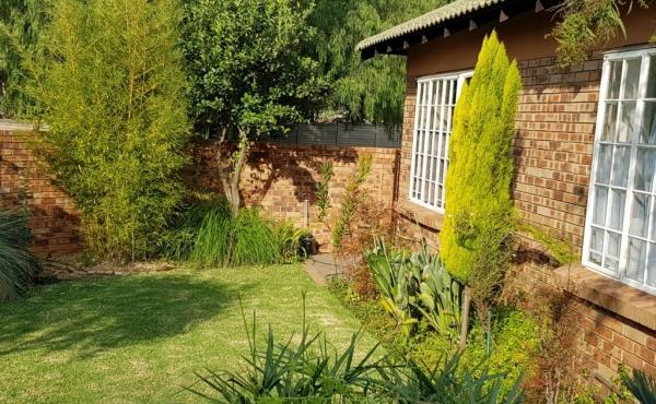 back-garden-area