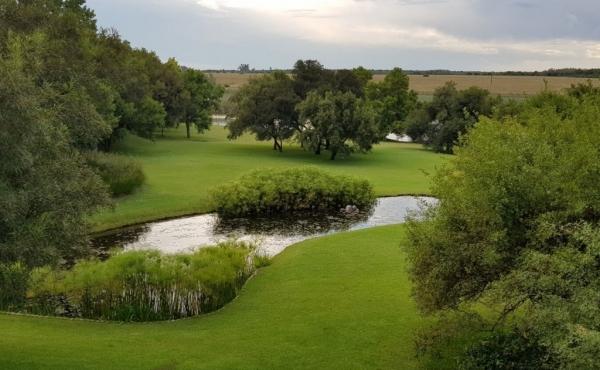 garden-pond-view